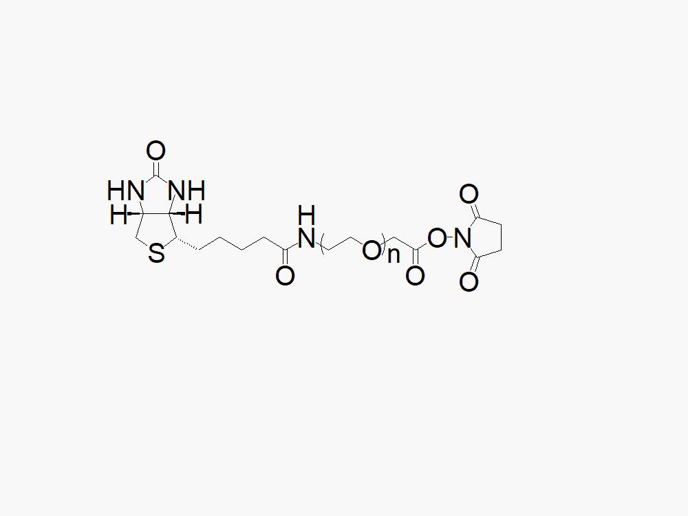 Biotin PEG Succinimidyl Carboxymethyl Ester