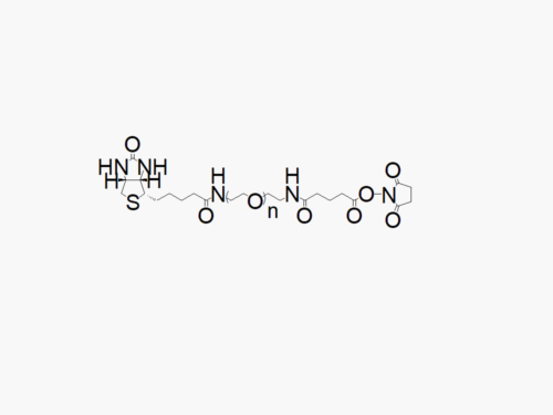 Biotin PEG Succinimidyl Glutaramide