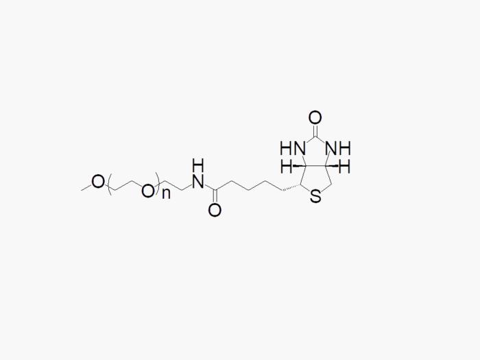 Methoxy PEG Biotin